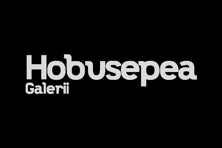 https://www.trtr.ee/wp-content/uploads/2017/04/hobusepea_hall_300x200.png